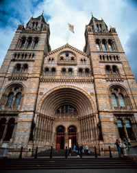 London Natural History Museum in London, England